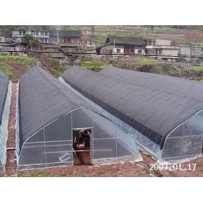 昆明温室菜棚 昆明温室价格  玻璃温室