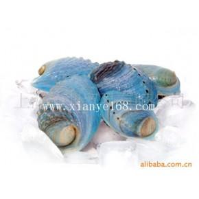 新西兰蓝鲍鱼;鲍鱼/进口水产品