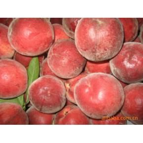 果树桃新品种春雪、春瑞、中油4号