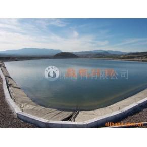 用于水渠、水库、水利大坝防渗膜HDPE膜