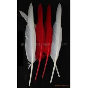 羽毛、羽毛工艺、工艺羽毛、舞台羽毛、新奇羽毛
