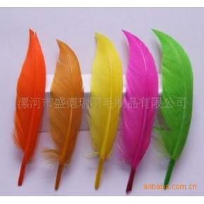 羽毛、美观羽毛、彩色羽毛、舞会羽毛