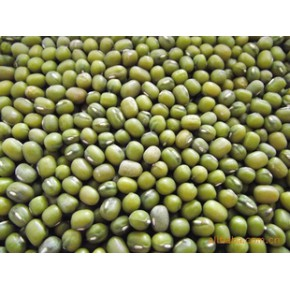 云南特产、供应批发优质杂粮绿豆、有机绿豆