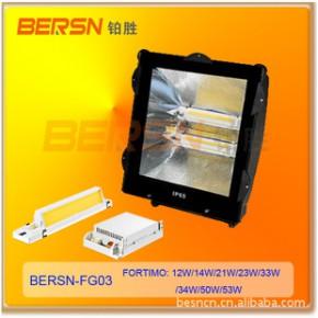 飞利浦Fortimo专用LED泛光灯 BERSN-FG03