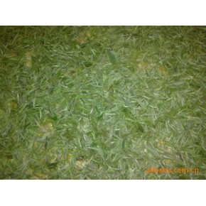 2011新茶原生态无污染,包装精美,实惠,质量好