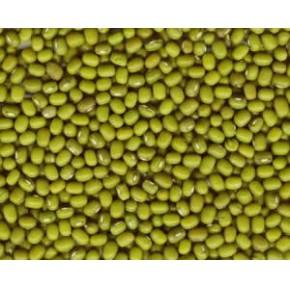 我公司销售手选3.6mm绿豆 价格电议