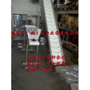 广州爬坡皮带输送机(图1)