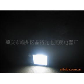 LED别墅投射灯 LED装饰灯