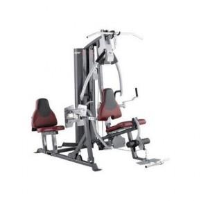 青岛综合训练器热销,艾威GM6800 豪华综合训练器(商用)双人站