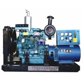里卡多/柴油发动机