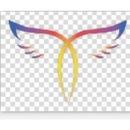 天津天堂鸟网络科技有限公司