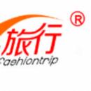 北京振新国际文化交流有限公司