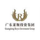 广东莱斯投资集团有限公司