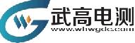 武汉武高电测电气有限公司