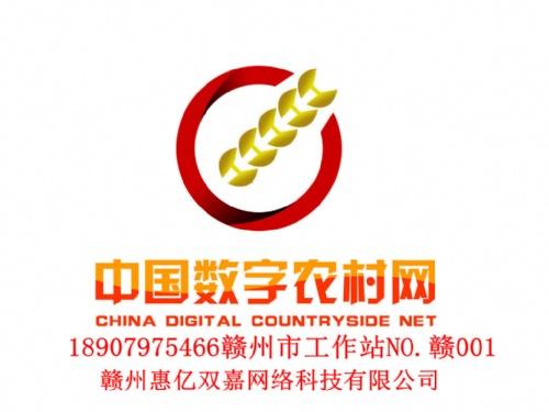 赣州惠亿双嘉网络科技有限公司