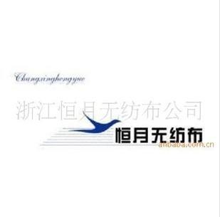 浙江恒月无纺布有限公司