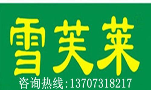 雪芙莱国际洗衣湖南分公司