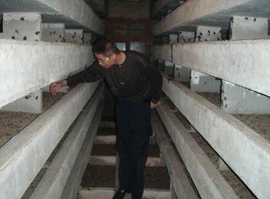 中国江苏联盟土元养殖基地